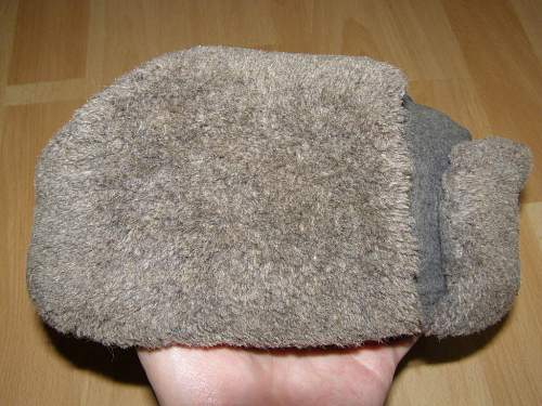 A salty ushanka