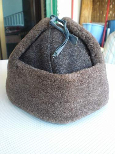 Can you help identify this Ushanka ?