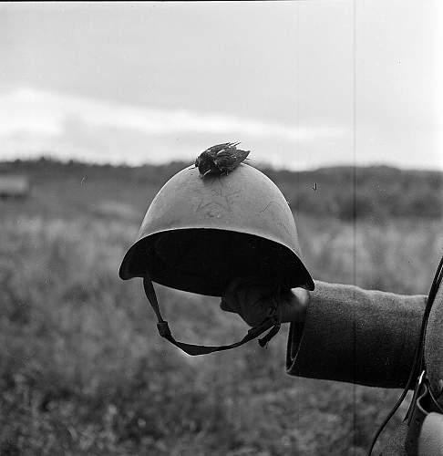 My new Ssh39 helmet
