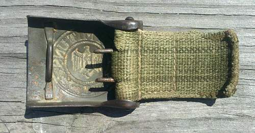 Tropical tab and buckle