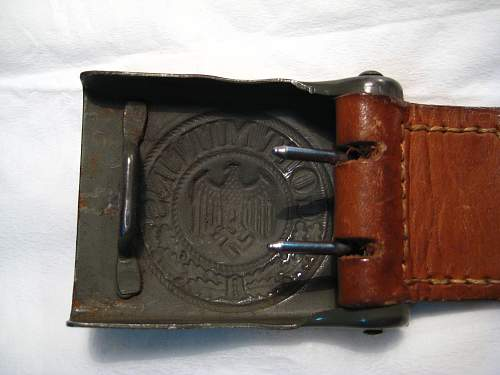 Click image for larger version.  Name:Tropical buckle 4.jpg Views:42 Size:311.0 KB ID:504000