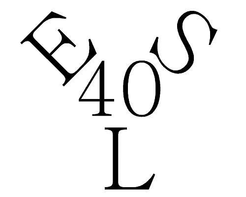 Click image for larger version.  Name:ERNST SCHNEIDER LOGO2-Model.jpg Views:35 Size:71.0 KB ID:934490