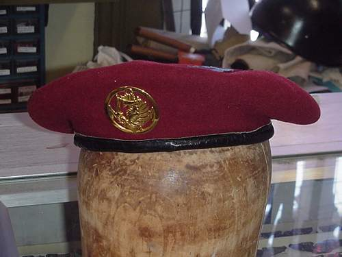 Click image for larger version.  Name:Beret.JPG Views:69 Size:68.2 KB ID:10811