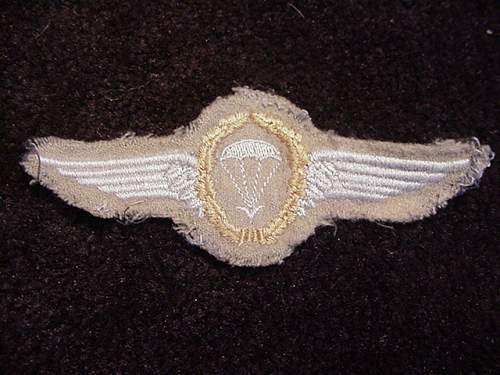 Click image for larger version.  Name:EM Para Wing.JPG Views:57 Size:89.5 KB ID:10812