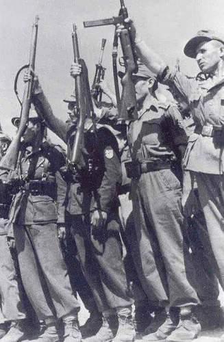 Axis made Greek National shield