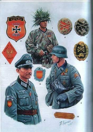 Spanish Division Emblem