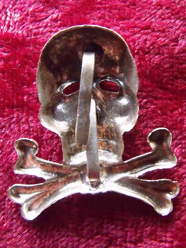 Brunswick Skull