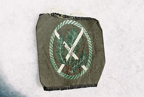 Opinions please on this ski jager insignia