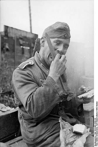 Click image for larger version.  Name:400px-Bundesarchiv_Bild_101I-081-3285-20%2C_Russland%2C_Soldat%2C_essend[1].jpg Views:463 Size:37.2 KB ID:129054