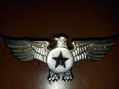 Pilot Badge Wings??