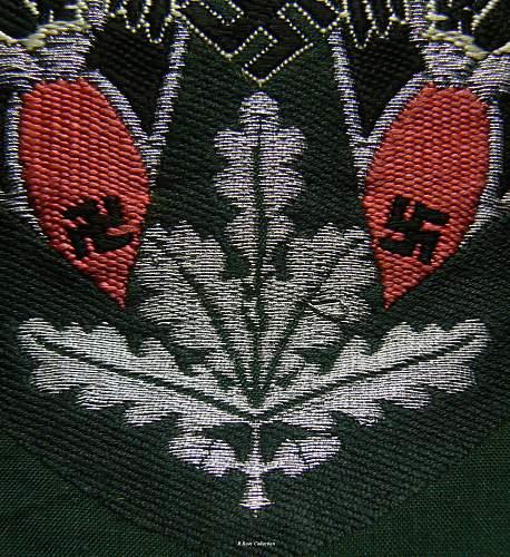 Panzer Standard Bearer's sleve patch.