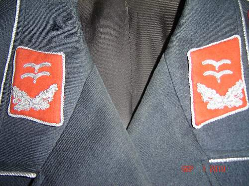 Luftwaffe Captain's Tunic...Opinions??