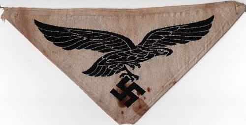Luftwaffe sport shirt insignia?