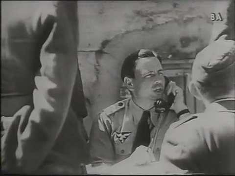 Luftwaffe tropical shirt with European theater insignia?