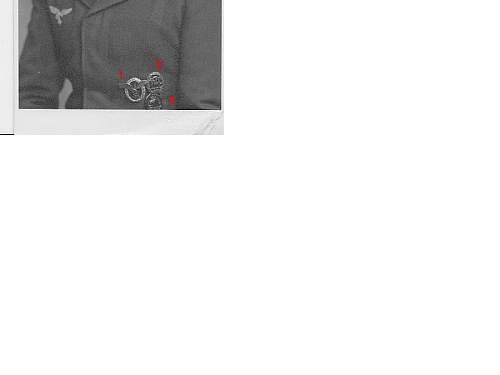 Click image for larger version.  Name:luftwaffe-medals.jpg Views:163 Size:30.5 KB ID:244101