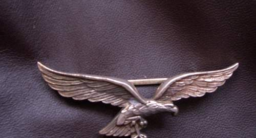 Luftwaffe Fighter Pilot Jacket with Insignia