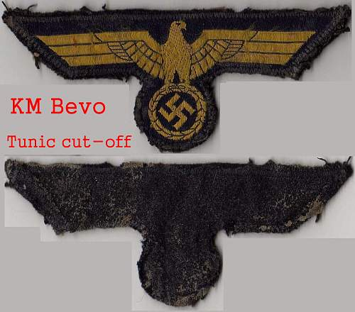 Click image for larger version.  Name:km bevo bird.jpg Views:40 Size:230.6 KB ID:276214