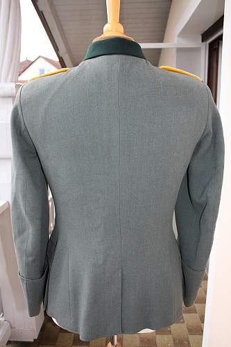 Cavalry Lt. Tunic: Opinions please!