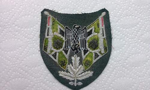 What is this cloth badge please?