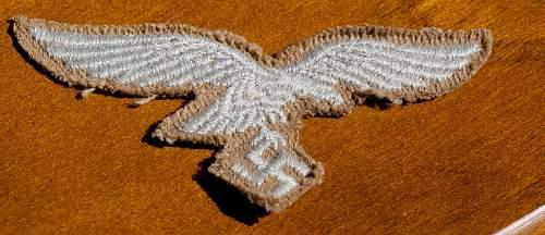 LW Tropical Breast Eagle
