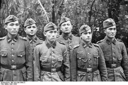 Click image for larger version.  Name:Bundesarchiv_Bild_101I-295-1560-21%2C_Nordfrankreich%2C_Turkmenische_Freiwillige.jpg Views:201 Size:76.1 KB ID:321236