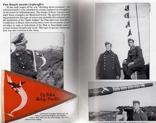 Unknown WWII German pennant (Luftwaffe)
