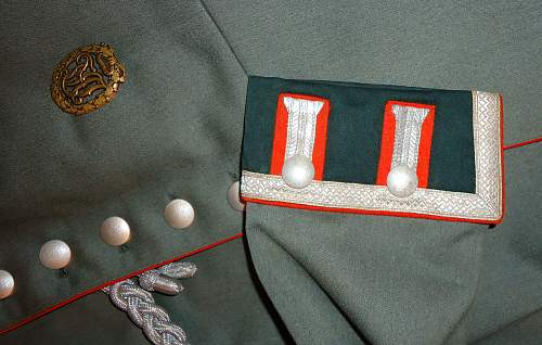 Maybe a pinned thread on Waffenrock tunics?