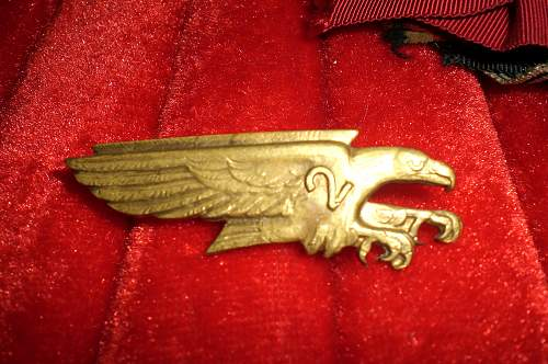 Possible Luftwaffe Badge? from Paris!