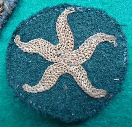 Click image for larger version.  Name:My Starfish.jpg Views:167 Size:113.1 KB ID:361843