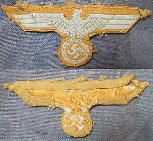 Cloth German Eagle, is this a Tropical Eagle or am I mistaken.
