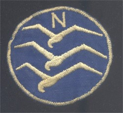 Glider Pilots Badge
