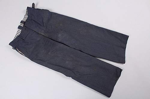 Heer parade trousers