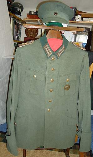 What is this?????????? fieldblouse/tunic/waffenrock?