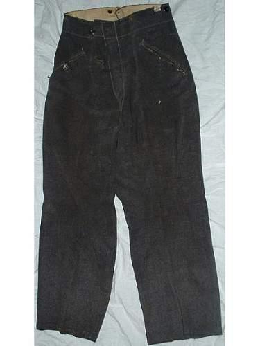 My salty Luftwaffe uniform pants