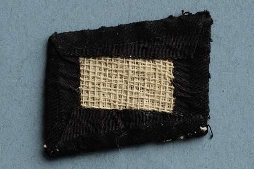 """Ukrainian """"Roland Battalion"""" cap badge."""