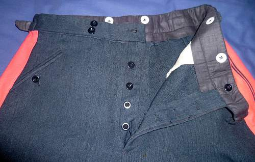 Opinions on Lufwaffe General Officer's Breeches Please