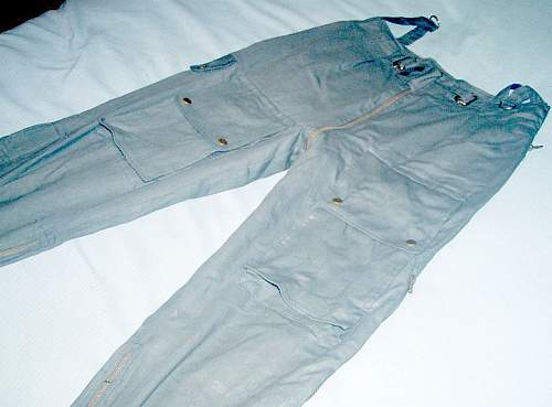 Click image for larger version.  Name:pants 2.jpg Views:41 Size:60.6 KB ID:527192