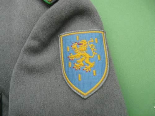 German tunic fake or genuine ?