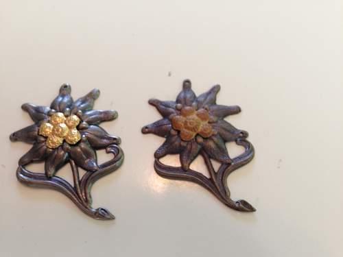 Zwei edelweiss