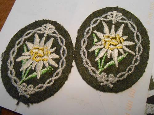 Edelweiss. Real or fake?