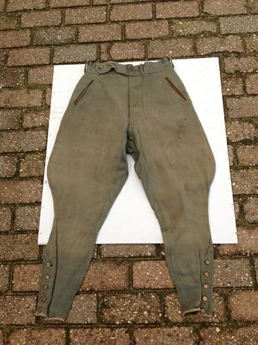 German pant or italian