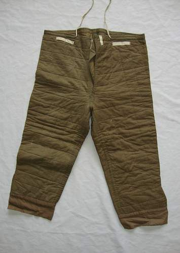 Click image for larger version.  Name:german padded pants 1.jpg Views:227 Size:125.7 KB ID:668948