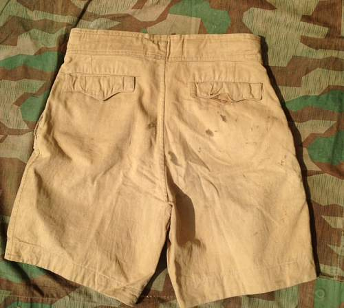 Luftwaffe short pant