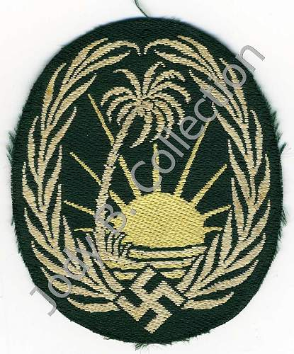 Tunic Removed Sonderverband 288 Patch