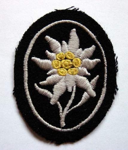 Click image for larger version.  Name:4322d1209469151-ss-gebirgsjaegers-sleeve-insignia-ss-moutain-troops-edelwiess[1].jpg Views:85 Size:169.2 KB ID:715558
