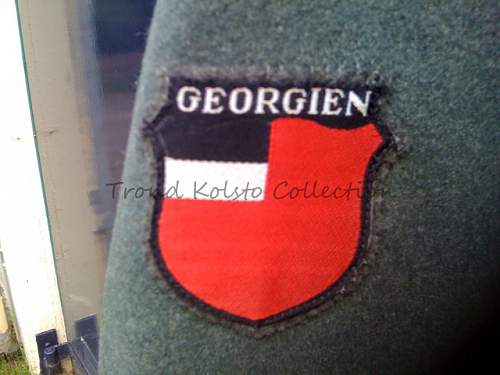 Click image for larger version.  Name:Georgian Sleeveshield copy.jpg Views:129 Size:193.5 KB ID:735201