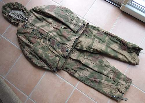 Click image for larger version.  Name:camo LW (3).jpg Views:137 Size:222.0 KB ID:754808