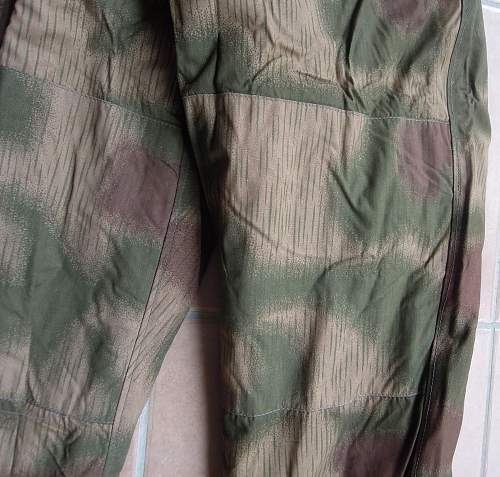 Click image for larger version.  Name:camo LW (51).jpg Views:27 Size:223.9 KB ID:754832