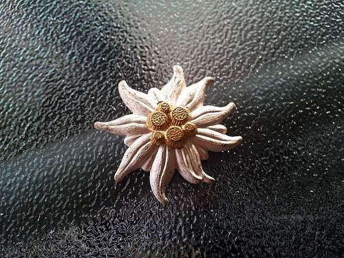 Gebirgsjager edelweiss pin back badge