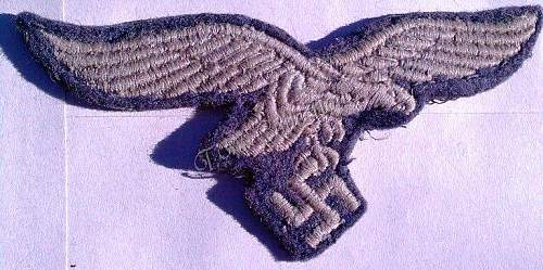 Luft tunic eagles